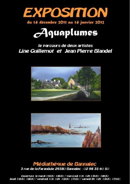 A Bannalec Exposition Aquaplumes - Line Guillemot et Jean Pierre Blandel - du 14 décembre 2011 au 14 janvier 2012 dans EXPOSITIONS EXPOSITION 395568_244848298916221_100001731590525_608744_1067126910_n